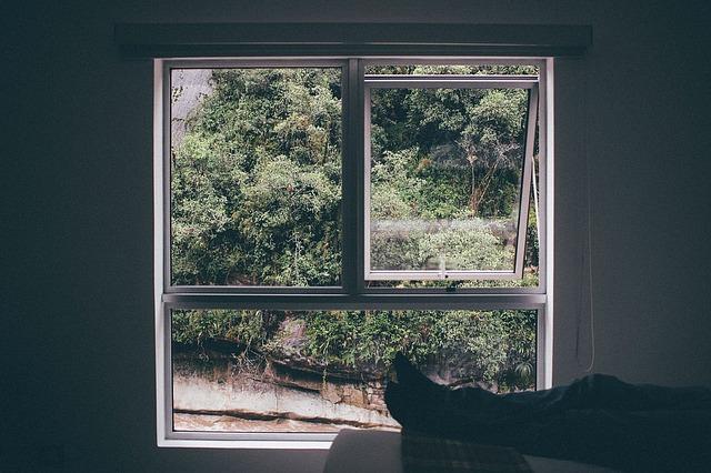 Lockdown Open Window